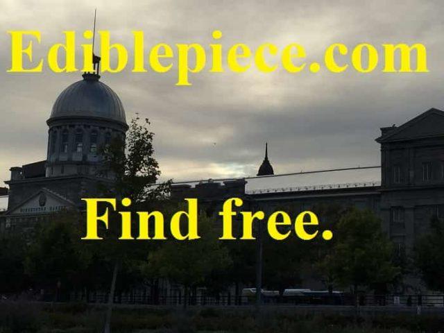 PG scholarships for biology majors Edinburgh