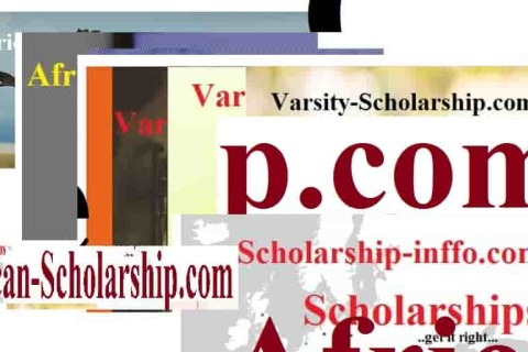 The japan postgraduate scholarship