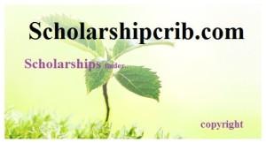 Dean Prim Scholarships