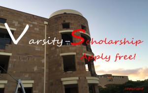 Visegrad Scholarships